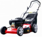 Dich DCM 1669A  self-propelled lawn mower rear-wheel drive